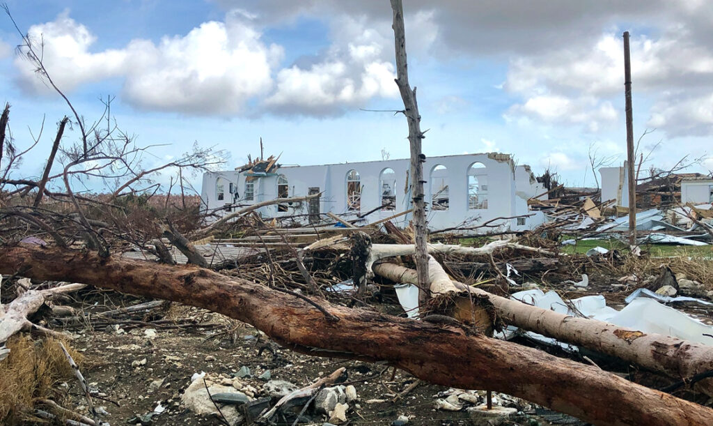 Photo of a fallen trees and white buildings destroyed by hurricane